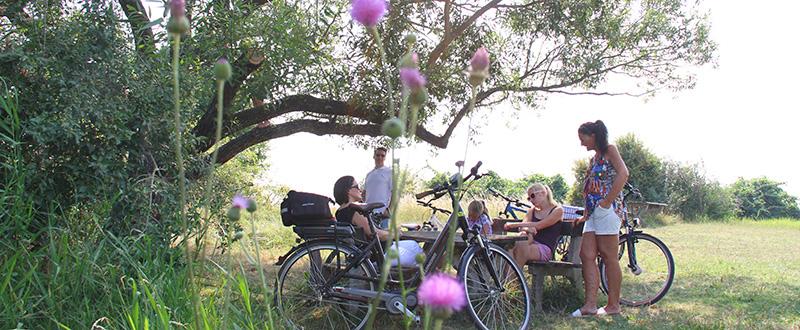 Mike's Bike - Radtour im Seewinkel