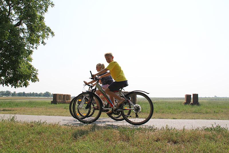 Mike's Bike Schulgruppen