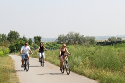 Mike's Bike - Podersorf am Neusiedlersee